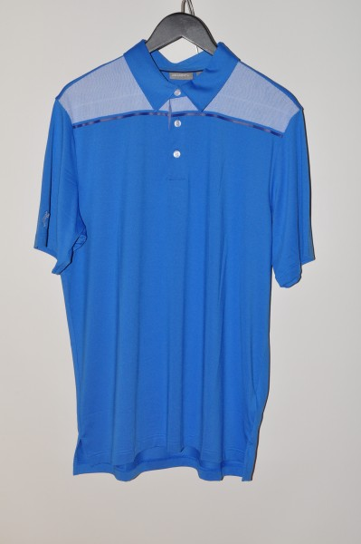 ashworth golf polo